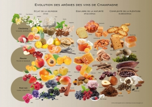 oenotourisme Epernay Reims Champagne reservation