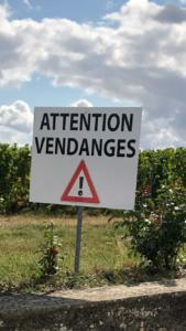Attention vendages