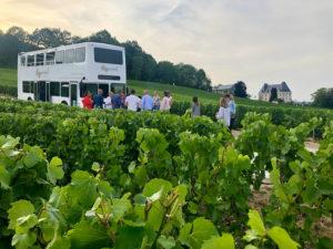 saran degustation vigne circuit tourisme team bulding