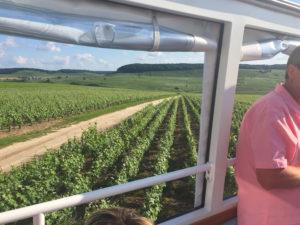 Vue des vignes, unesco, Epernay, Reims, decouverte